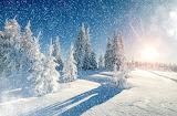 Winter Snow Snowflakes 468214