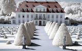 Winter's Shade of White