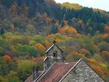 Clocher automne
