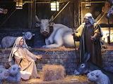 Christmas-nativity-Mary-Joseph-animals