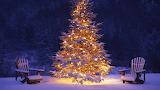 Fresh Snow at Christmas
