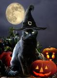 Halloween-kitty-gina-femrite