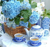 Blue tea Debra