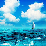 Sailing the Blue Sea...