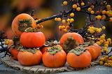 Diospyros kaki-Japanese persimmon