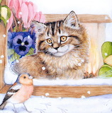 Cat and Bird by Cook Debbie