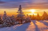 In the winter sun