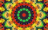 Tiger and Butterfly Kaleidoscope