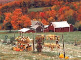 ^ Fall in Vermont