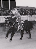 Giddy Up 1954