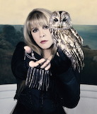 Stevie Nicks In Your Dreams with owl