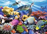 #Ocean Turtles by Howard Robinson