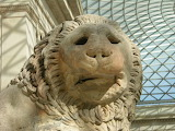 British Museum Top 20 00-3 Great Court Lion Close Up
