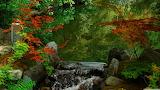 Kyoto-garden-japan-wallpaper