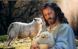 Caring-lost-sheep-jesus-shepherd-christ-religion