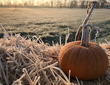 When the frost is on the punkin... 1