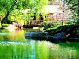 Peaceful Scene Los Angeles California USA