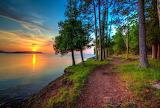 Lake, forest, trees, path, sun, sunset, reflection, landscape