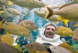 So many fish.............................................x