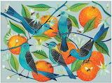 Birds & Oranges
