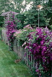 A fence of flowers