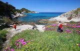 Trekking-Cotoncello-Elba-Island-Tuscany