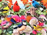 #Garden Birds by Howard Robinson