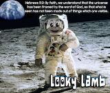 Looky Lamb Moon