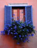 Blue shutters with blue flowers