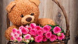 Basket, roses, bouquet, bear, bear, pink, flowers, romantic, Ted