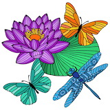 butterfly and dragonfly