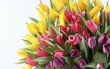 Buque-de-flores-aaa8d3