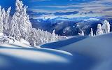 Снежная тишина