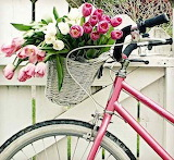 Bicycling for Flowers