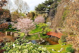 Japanese garden, Albert Kahn Museum