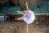 Herbst Ballett