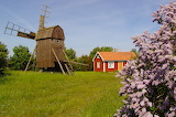 Swedish Summer at Öland - Photo from Piqsels id-zcvaz