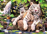 #White Tigers by Howard Robinson