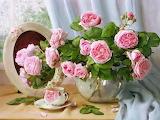 beautiful flowers & tea