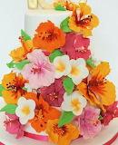 Hibiscus cake @Cake Occasions