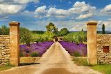 ☺♥ So pretty, France...