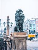 Lion's Bridge, Sofia Лъвов мост.