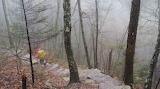 Spring Mountain Foggy Steps