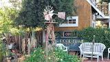 A Backyard in Sonoma California