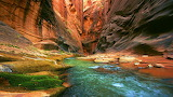 River Flowing Through The Grand Canyon USA