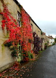 Somerset England UK Britian autumn
