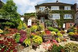 house and garden full of flowers