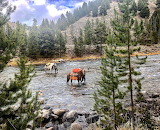 Leaving Idaho wilderness ahead of winter storm