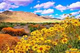 beautiful landscape-photographer-jeffrey favero