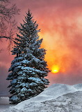 Zima - Winter - sunset